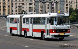 Обширная история автобуса Икарус