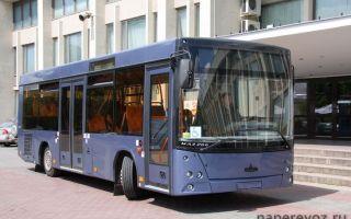 Автобусы МАЗ — почему они так популярны