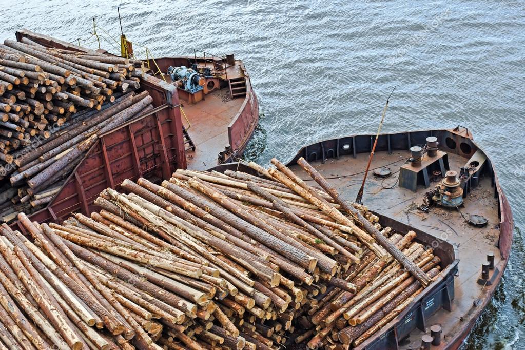 перевозка леса судами